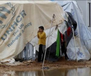 النازحون في سورية وتحدي شظف العيش
