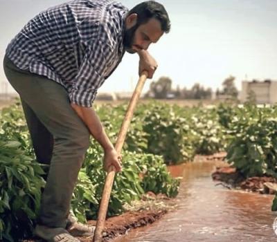 تقييم واقع وفاعلية برامج سبل العيش الزراعية في منطقتي درع الفرات وعفرين